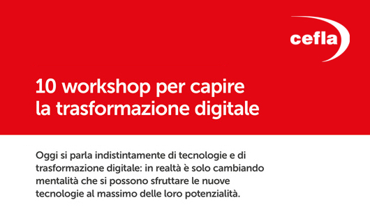 IMG WSdigital social | Cefla