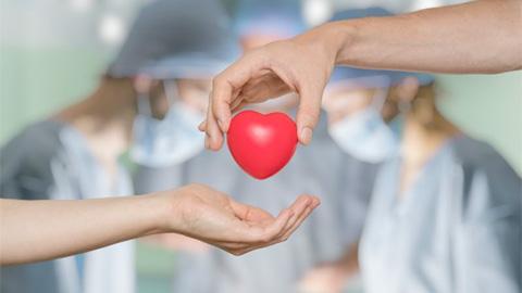 news donazioni cefla | Cefla